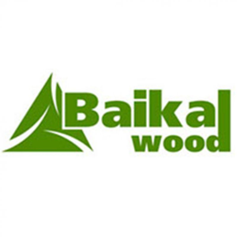 Baykal wood creation week