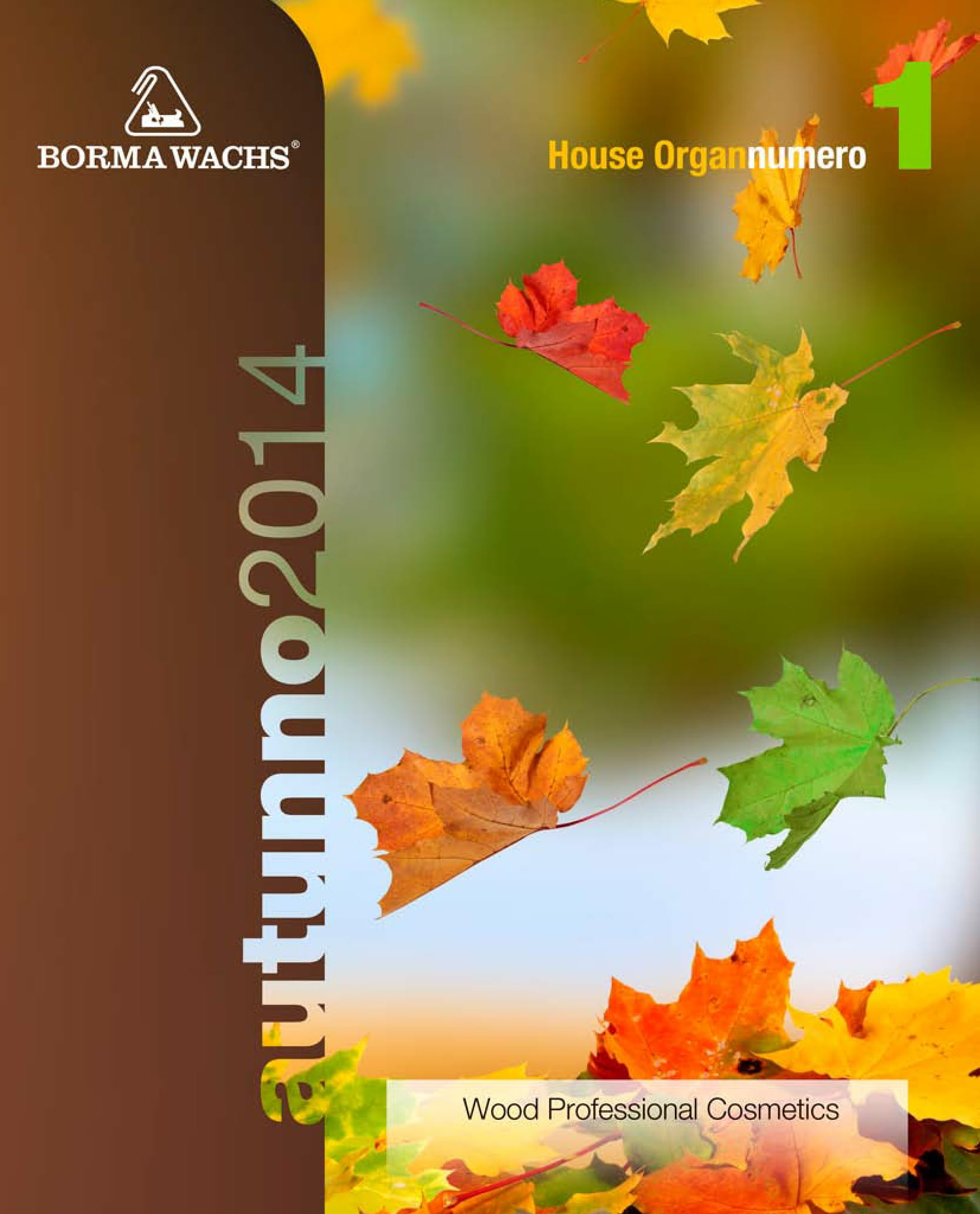 1_BORMA_WACHS_IT_AUTUNNO_2014-01